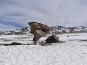 arbol-piedra-bolivia-snow-1